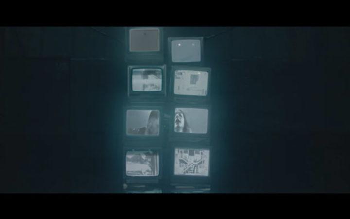 01–marmozets
