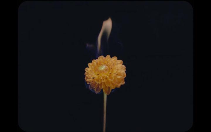 05–banfi